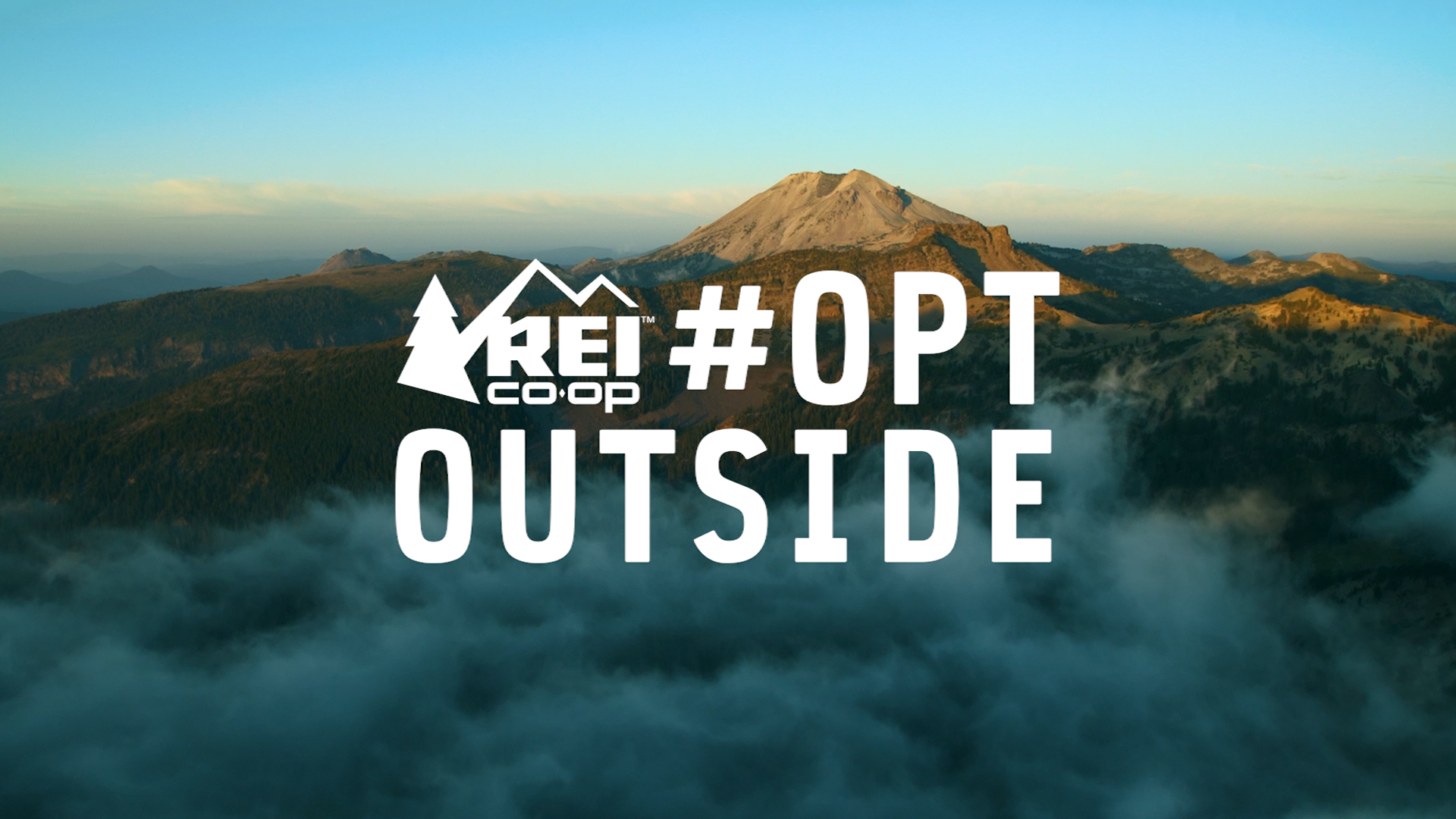 REI's #optoutside campaign for Black Friday